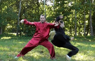 COMBAT TAI CHI - Chen Style Taiji Quan Fighting Techniques - 陈式 太极拳